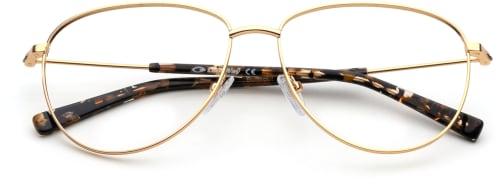 Trendiga glasögon med guld bågar för 2020 från the Collection