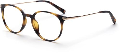 Vad är terminalglasögon?